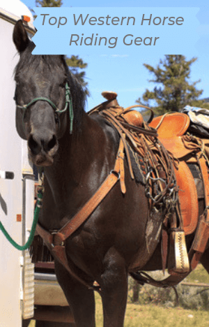 Top Western Horse Riding Gear