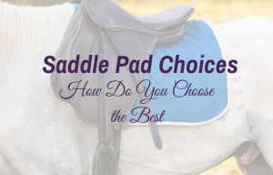 Saddle Pad Choices