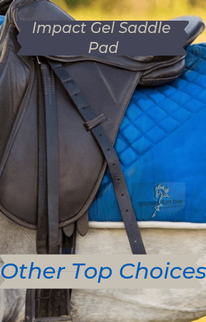 Impact Gel Saddle Pad And Other Top Choices