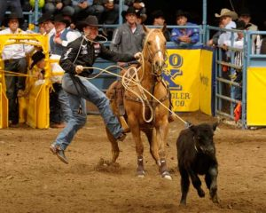 Trevor Brazile Rides in Rodeo