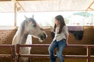 Western Style Riding Lessons