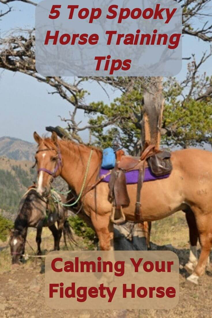 Spooky Horse Training Tips